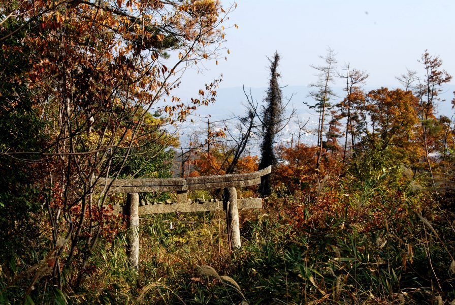 麻佐岐神社の鳥居