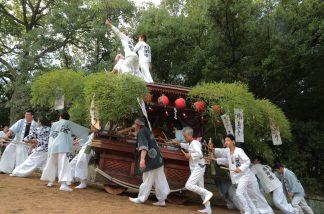 鴻八幡宮秋祭4